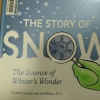本日のフレーズ #897   Snow crystals are like us ----- we're each different, but we have a lot ...