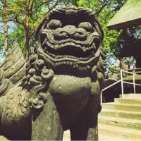 子宝と就職運を上げる諏訪神社