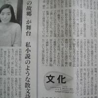 2017年 文学界新人賞 沼田真佑 影裏