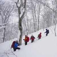 【新登場!】冬期予約型 スノーシュートレッキングプログラム(12月下旬~4月上旬)