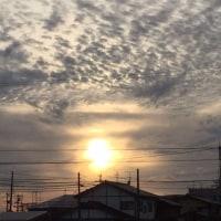 復活!!プリン&市役所7階からの景色&島根の実家は大丈夫です