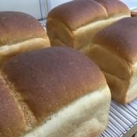 アンシャンテの定番 食パン ( ´ ▽ ` )ノ