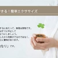 【エクササイズ】体のゆがみを整える(ストレッチ編)