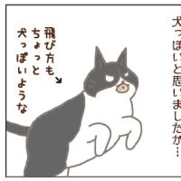 犬っぽい猫