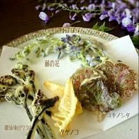 季節の楽しみ 山菜の天ぷら #山菜