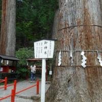 囲碁と世界遺産二荒山神社