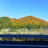 ☆☆☆ 年末出張(栃木県内) 年越し蕎麦を食べました~土曜日・・・