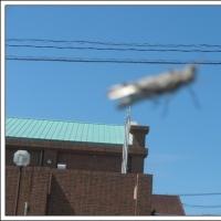 これ未確認飛行物体?