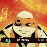 ミュータント・タートルズ/DVD