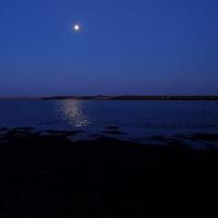 蒲生干潟の月