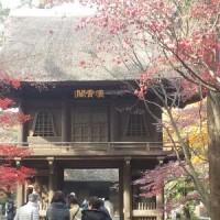 平林寺の紅葉と晩ごはん