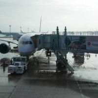 飛行機に乗って石垣島に行ってきました!