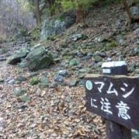 棒ノ折山(969m)