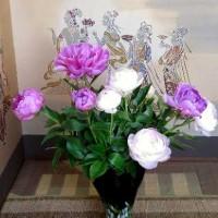 直径15㎝に開いた「芍薬の花」
