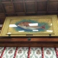 ◆昨日、今宮戎神社へ行って来ました!