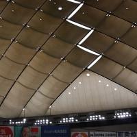 """ジャイアンツOB""""直生""""解説付き練習見学ツアー 対日本ハム戦"""