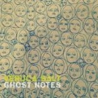 VERUCA SALT /GHOST NOTES