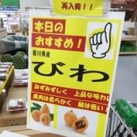 国産最高級品青森6片ホワイトニンニクGET✌️「#高松青果」出荷の山口農園様から‥農法は‥✌️