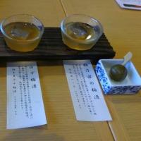 鎌倉の美味しいもの