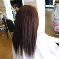 春はピュアミング&プログレスカラーで美髪カラーです。(^o^)(^o^)