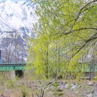 信州安曇野・・・雪の八方尾根・・・JR大糸線E127系が・・・柳の芽吹く松川橋梁を渡る