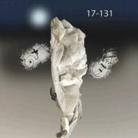 月裏から地球観察便り17-131.gif