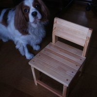孫のために 小さな椅子を作りました