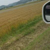 糸島半島ドライブ   2