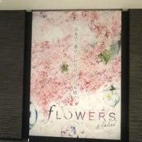 FLOWERS by NAKED(東京都中央区 日本橋三井ホール)