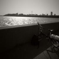 一般質問質問席自転車編、テレビでも自転車交通やっていました