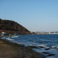 海の家廃業