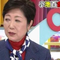 有名人(45)女の魅力(27)樋口可南子 - 昭和のマロ