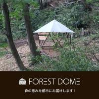 クリスマスローズ展@昭和記念公園