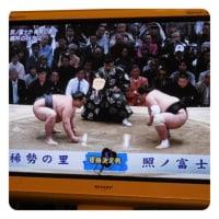 力をいただいた15日間の相撲観戦