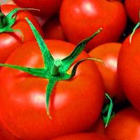 トマトの栄養と効果で糖尿病を改善出来るか