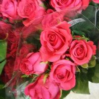 ◆5・3[創価学会母の日]・[創価学会の日]・おめでとうございます