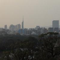 福岡城跡 天守台から
