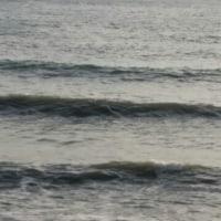 波ありの連絡