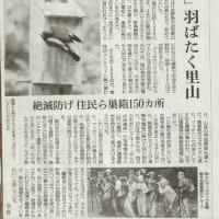 朝日新聞のIさんの記事