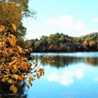 三方を山に囲まれた美しい湯ノ湖畔で紅葉