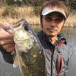 2017.3.18(土)ハスの池