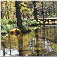 御泉水自然公園