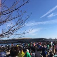 Fヨコマラソン‥。
