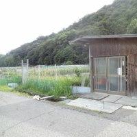 29-06/21  雨後のアマゴ狙い・・・?