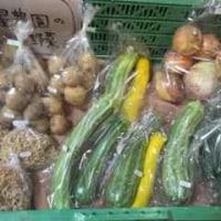 今週の星農園のお野菜は。