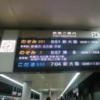 新生軒@兵庫県姫路市 「ラーメン&ワンタン麺&ぎょうざ」