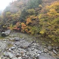 面河渓関門の様子(11月15日)