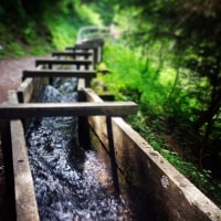 Bisses, 灌漑運河 Bisses, irrigation canals