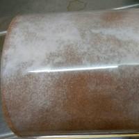 プチ・シューのロールケーキ