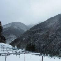 平成29年1月16日・今朝の東祖谷-2.3℃